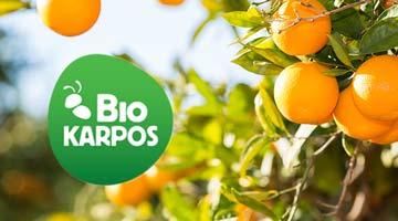 Agrumes BioKarpos