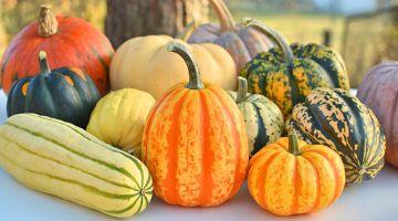 Fruits et légume d'automne