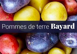 Pommes de terre Bayard