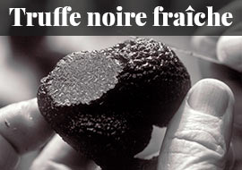 Truffe noire fraîche de Lozère