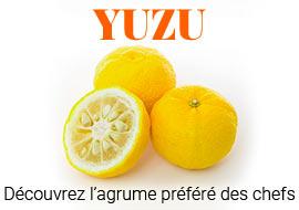 yuzu agrume japonais
