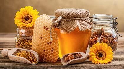 Maison Sauveterre Honeys