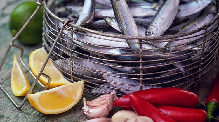 Anchois : conserves et spécialités