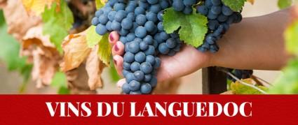Vins rouges, blancs et rosé du Languedoc