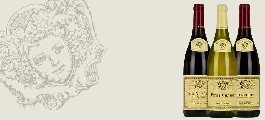 Bouteilles de vin Louis Jadot