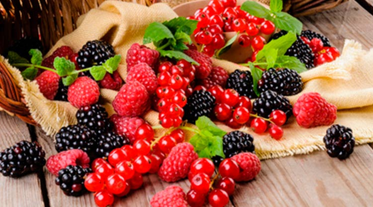 Fruits rouges en conserve