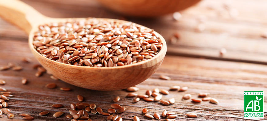 Organic grains & seeds
