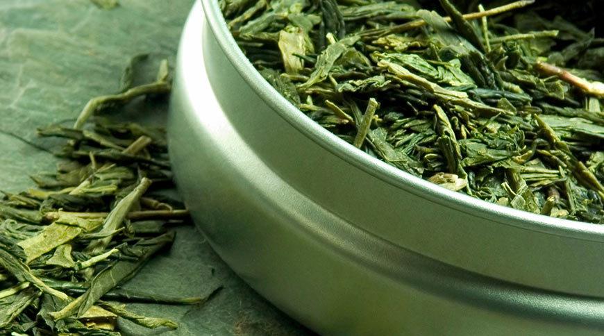 Pourquoi boire du thé vert : vertus et bienfaits